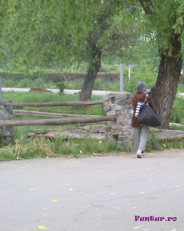 straina in parc